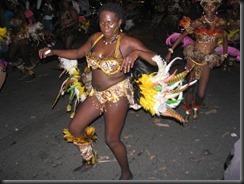 carnaval 29janvier 2012 gpg concept 065