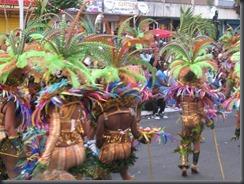 carnaval2014 -l'hexadom & le relais ultramarin 097